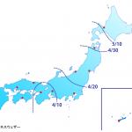 A.殺虫剤前線